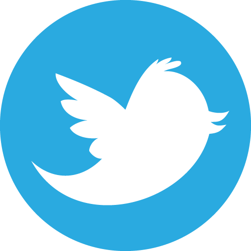 This is a photo of the blue twitter bird logo